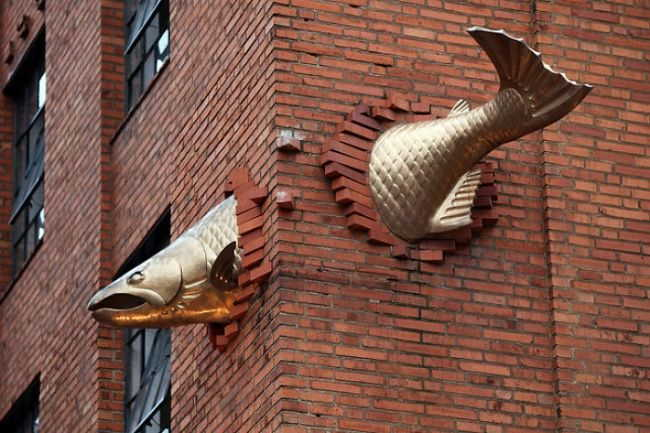Transcendence - fish through building