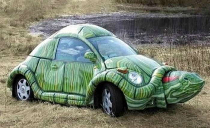 Turtle Beetle car