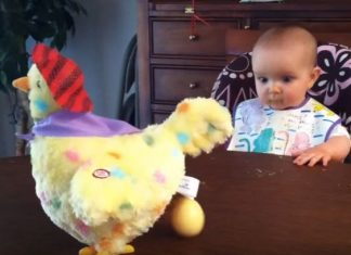 Baby And Hen Toy