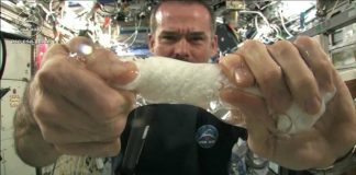 chris hadfield wring towel wet in space