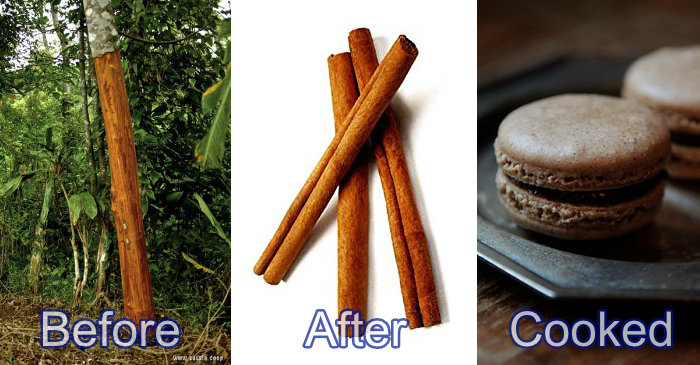 cinnamon before after cooked