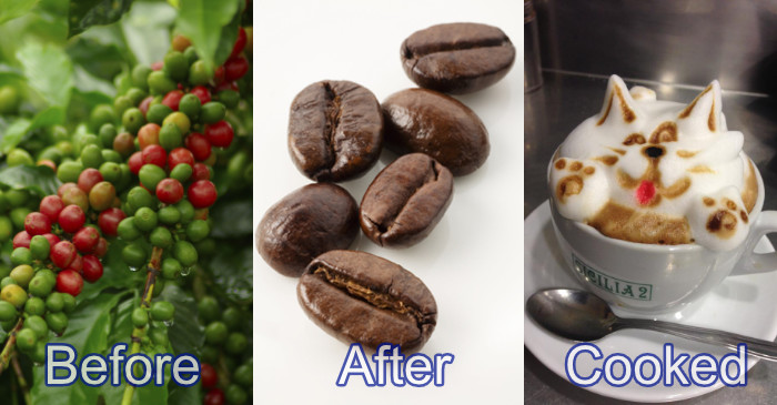 coffee before after cooked
