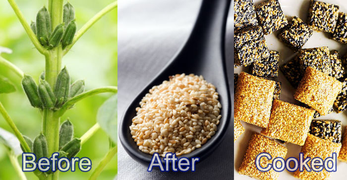 sesame before-after-cooked