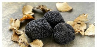 black truffles project