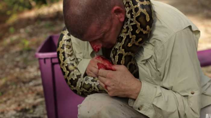 python latches on handlers face