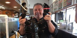 butch yamali with lobster louie 132 old years