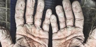 alex gregory hands