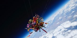flower bouquet in space