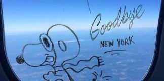 snoopy drawing plane window