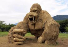 gorilla sculptures of rice straw