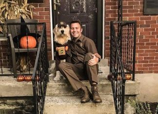 usa ups drivers and friends dogs